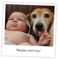 Beagles and Kids